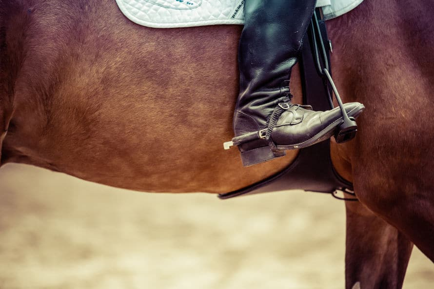 horse float repairs - show jumping